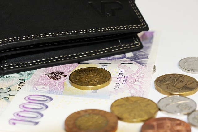peněženka a české koruny