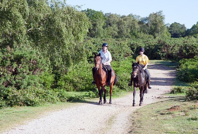 projížďka na koních